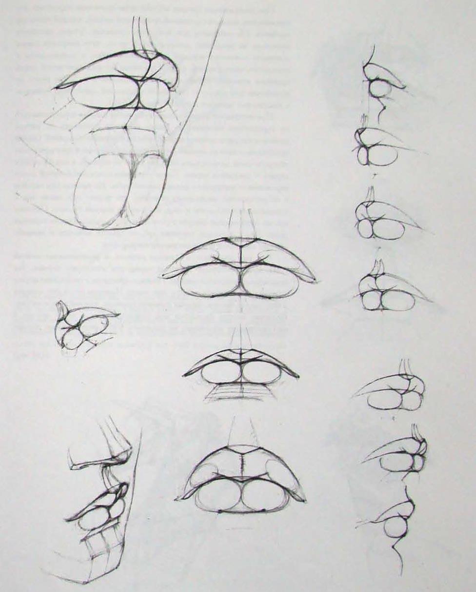 11. Рисуем губы.  Рисование губ.